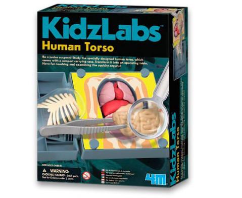 KidzLabs - Menschlicher Koerper-1