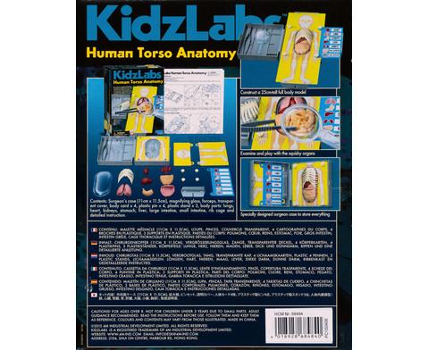KidzLabs - Menschlicher Koerper-2