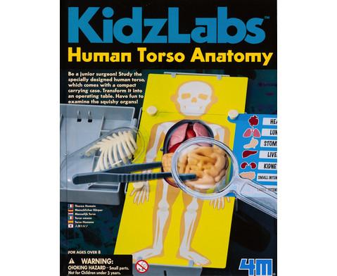KidzLabs - Menschlicher Koerper-3