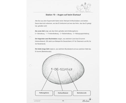 Lernwerkstatt Das Huhn-11