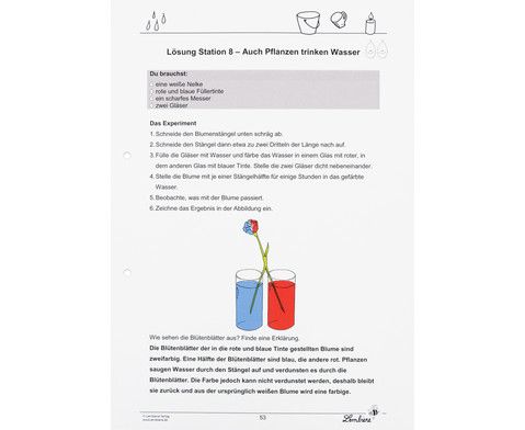 Lernwerkstatt Wasser - Experimente zum Staunen und Verstehen-7