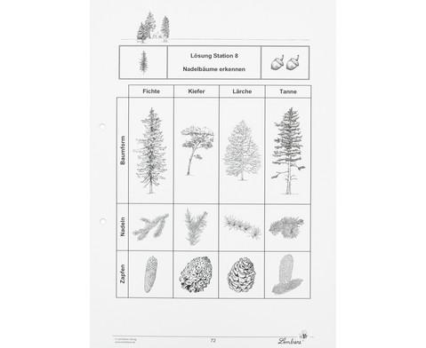 Lernwerkstatt Der Wald mit CD-ROM-11