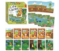 Life Cycles - Lebenszyklen