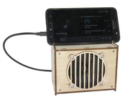 Lautsprecher Loetbausatz-5