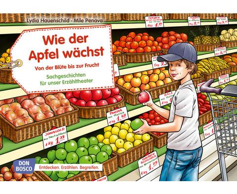 Bildkarten Wie der Apfel waechst Von der Bluete bis zur Frucht