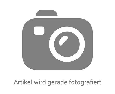 Schmetterlinge zuechten