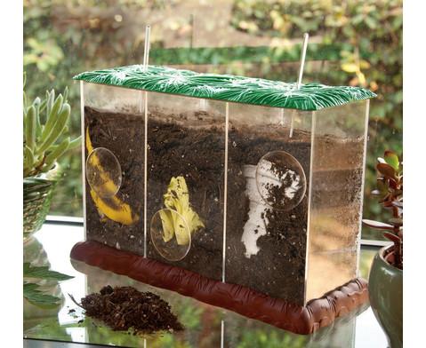 Transparenter Kompost-Behaelter-3