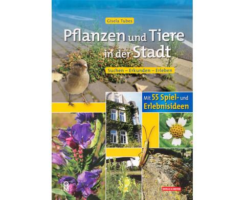 Buch Pflanzen und Tiere in der Stadt-1