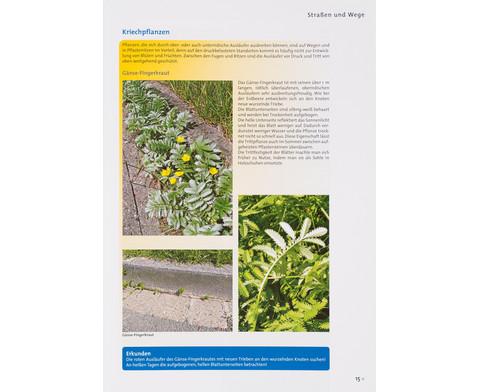 Buch Pflanzen und Tiere in der Stadt-3