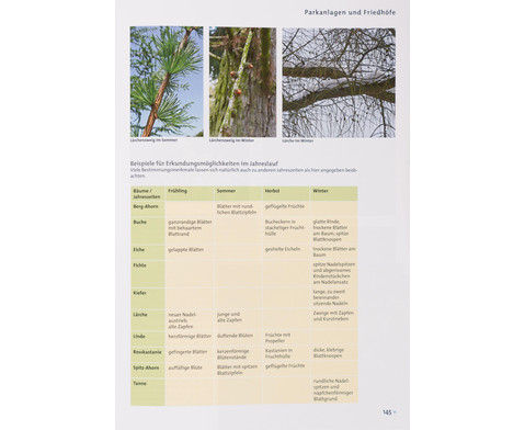 Buch Pflanzen und Tiere in der Stadt-6