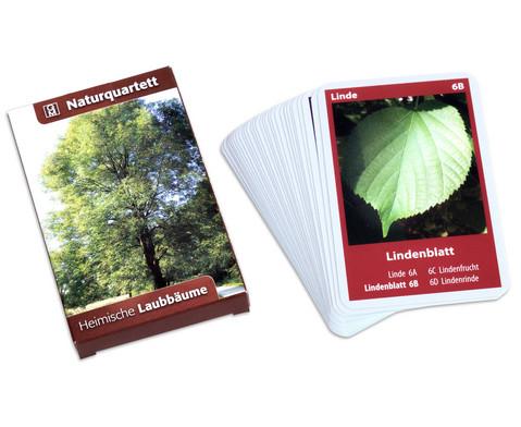 Naturquartett - Heimische Laubbaeume-1