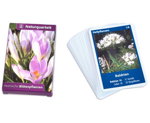 Naturquartett - Heimische Bluetenpflanzen-1