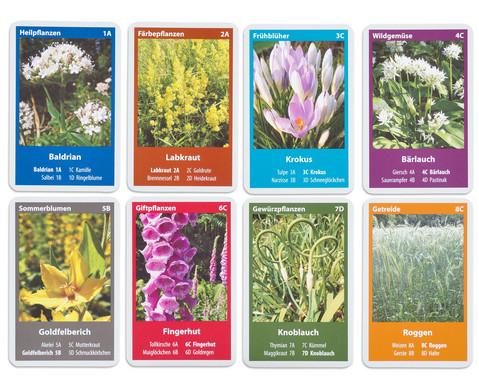 Naturquartett - Heimische Bluetenpflanzen-2