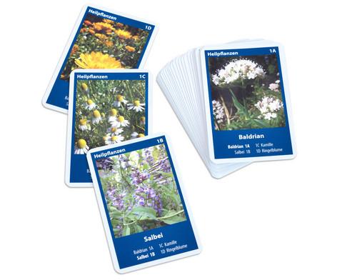 Naturquartett - Heimische Bluetenpflanzen-3