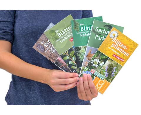 Bestimmungskarten - Bluetenpflanzen am Wegesrand 10 Stueck-6