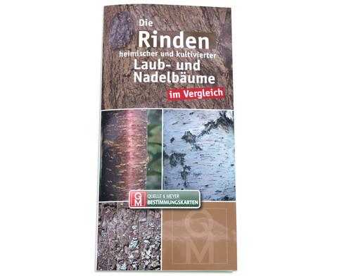 Bestimmungskarten - Rinden heimischer Laub- und Nadelbaeume 10 Stueck-1