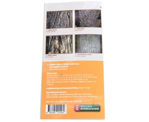 Bestimmungskarten - Rinden heimischer Laub- und Nadelbaeume 10 Stueck-4