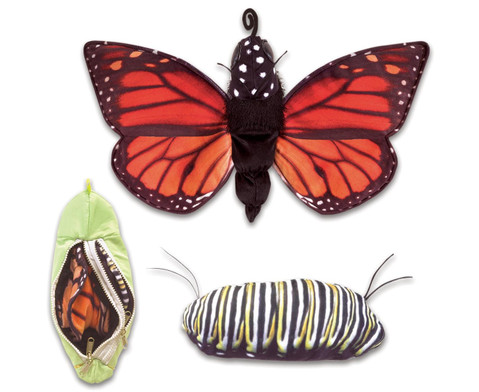 Handpuppe Metamorphose Schmetterling