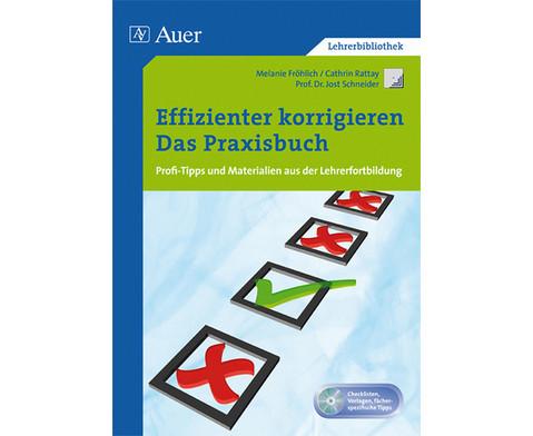Effizienter korrigieren - Das Praxisbuch