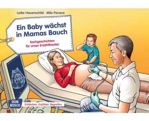 Bildkarten Ein Baby waechst in Mamas Bauch