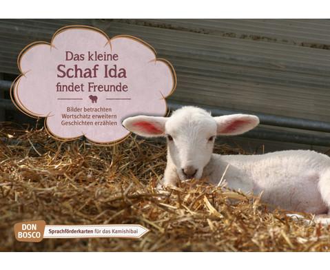 Bildkarten Das kleine Schaf Ida findet Freunde