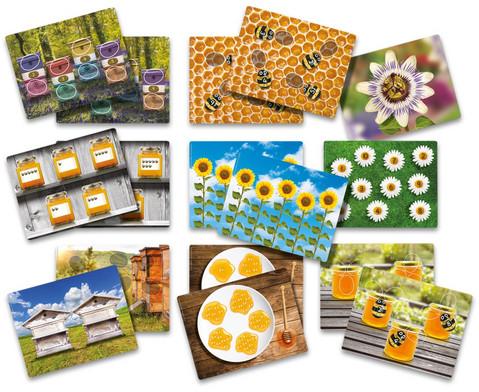 edumero Arbeitskarten für Bienchen-Zählsteine