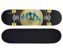 Skateboard Fish Eye 31-1