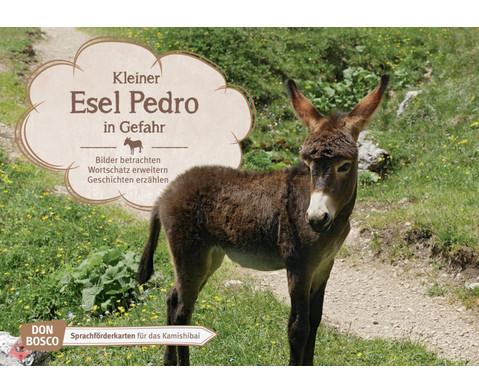 Kleiner Esel Pedro in Gefahr Kamishibai-Bildkartenset