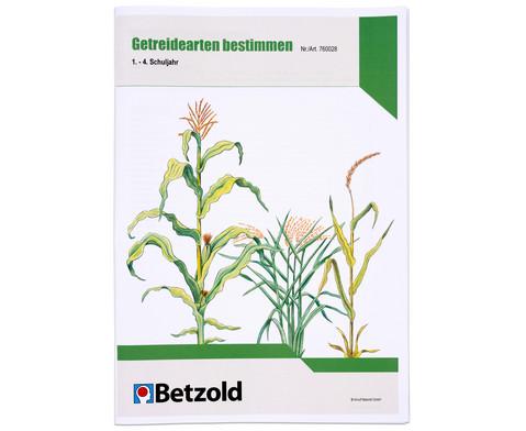 Getreidearten bestimmen Themenheft