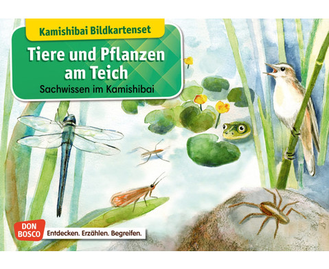 Tiere und Pflanzen am Teich Kamishibai-Bildkartenset