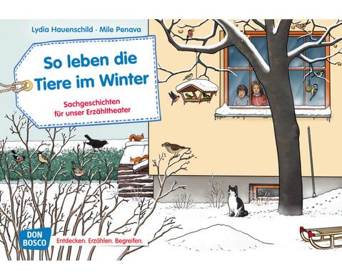 So leben die Tiere im Winter Kamishibai Bildkartenset