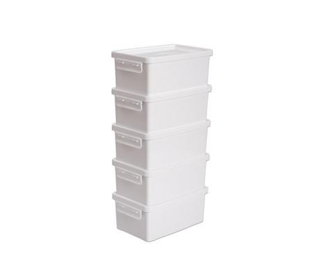 Aufbewahrungsbox 38 l Set mit 5 Stueck weiss
