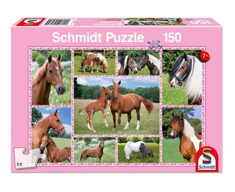 Puzzle Pferdetraeume