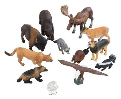 Nordamerikanische Tiere 12-tlg Set