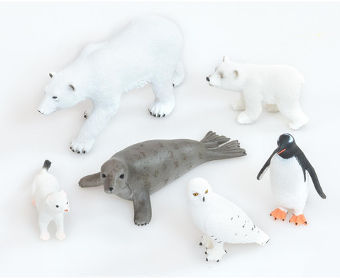 Betzold Arktische Tiere 6-tlg