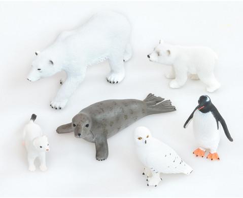 Betzold Arktische Tiere 6-tlg Set
